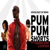 Pum Pum Shorts (feat. Gyptian & Teairra Mari) - Single