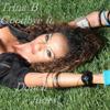 Trina B - Goodbye Ft. Donell Jones kunstwerk