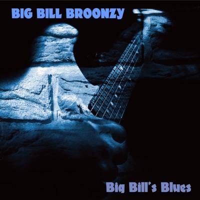 Big Bill's Blues - Big Bill Broonzy