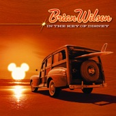 Brian Wilson - Colors of the Wind