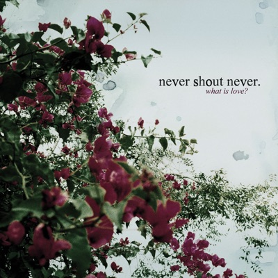 What Is Love? - Never Shout Never