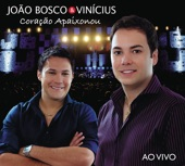 João Bosco e Vinicius - Curtição