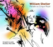 William Sheller - Dans Un Vieux Rock'n'roll 2