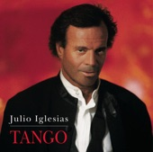 Julio Iglesias - El Dia Que Me Quieras