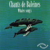 Chants de Baleines - Whales' Songs