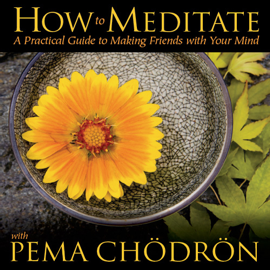 How to Meditate with Pema Chodron audiobook