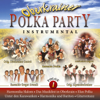 Oberkrainer Polka Party Instrumental, Folge 1 - Various Artists
