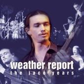Weather Report - Punk Jazz