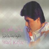 Anti Alamteeni A 'asheq Wael Kfoury - Wael Kfoury