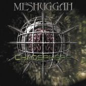 Meshuggah - The Mouth Licking What You've Bled