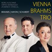 Vienna Brahms Trio - Brahms Haydn Schubert