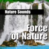 Force of Nature (Nature Sound)