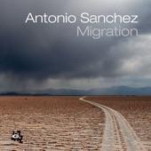 Antonio Sanchez - Challenge Within