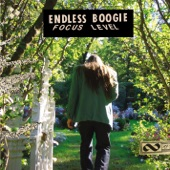 Endless Boogie - Jammin' With Top Dollar