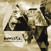 Domestic (feat. Nik & Jay) [Radio Edit] artwork
