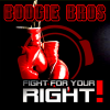 Boogie Bros - Fight for Your Right (RainDropz! Bootleg Remix Edit) artwork