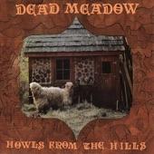 Dead Meadow - Dusty Nothing