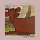 The Resonance Project - Sat Narayan