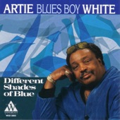 "Artie ""Blues Boy"" White - Ain't Nothing You Can Do"