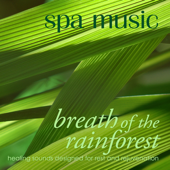 Spa Music: Breath of the Rainforest
