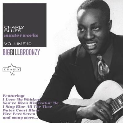 Charly Blues Masterworks, Vol. 10: Big Bill Broonzy - Big Bill Broonzy
