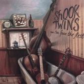 Shook Twins - Wicked Little Witness