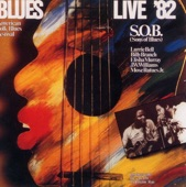 Sons Of Blues - Did You Ever Love A Woman