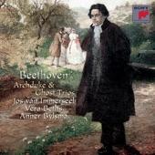 """Jos van Immerseel, Vera Beths, Anner Bylsma - Piano Trio in D Major, Op. 70 """"Ghost""""/I. Allegro vivace e con brio"""