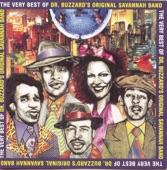 Dr. Buzzard's Original Savannah Band - Transistor Madness / Future D.J.