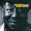 Blue Skies - The Best Of Muddy Waters - Muddy Waters
