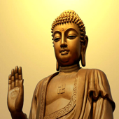 Buddha Is Praying - Single