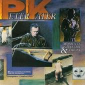 Peter Kater - Wave Runner