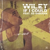 If I Could (feat. Ed Sheeran) - Single