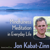 Mindfulness Meditation In Everyday Life