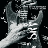 Stevie Ray Vaughan & Double Trouble - Empty Arms (Album Version)