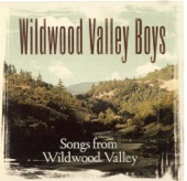 Wildwood Valley Boys - The Big Man Fron Rosine