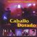 Caballo Dorado - Payaso de Rodeo