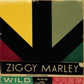 Ziggy Marley - Welcome To the World
