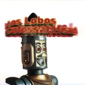 Los Lobos - Little Japan