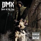 DMX - Goodbye