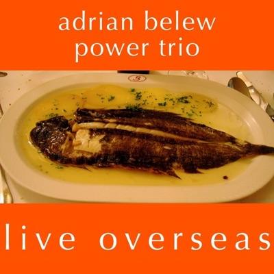 Live Overseas - Adrian Belew
