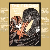 The Finches - Step Outside