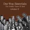 Doo-Wop Essentials Volume 9
