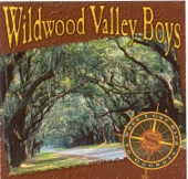Wildwood Valley Boys - Somebody's Brother