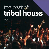 Just house vol 1 by various artists on apple music for Tribal house tracks