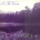 In the Woods... - Wotan's Return