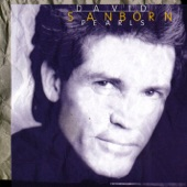 David Sanborn - Nobody Does It Better