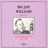 Big Joe Williams - My Grey Pony