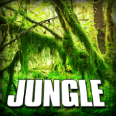 Jungle (Nature Sound) - Single