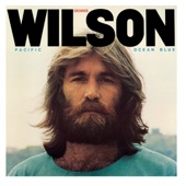 Dennis Wilson - River Song